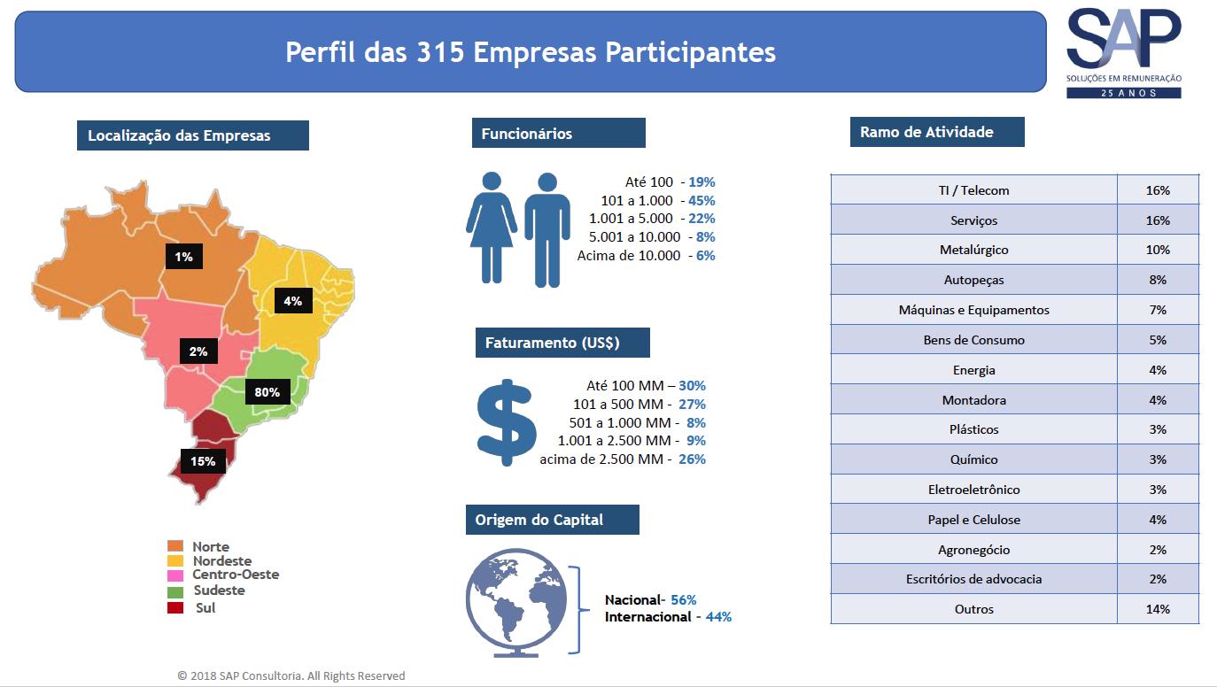 Dados Estatísticas Trabalho Remoto Brasil